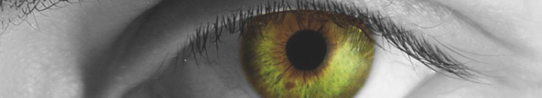 occhio-header