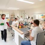 smaniotto-laboratorio11